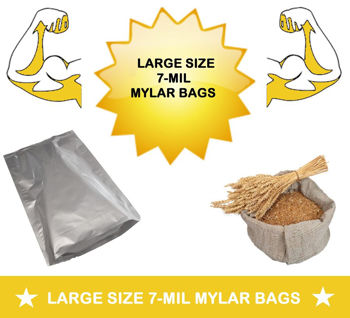 Picture for category LARGER SIZE BAGS